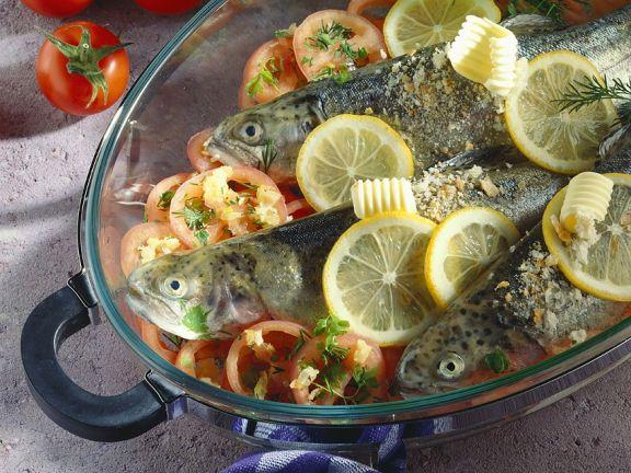 Forellen auf Tomaten