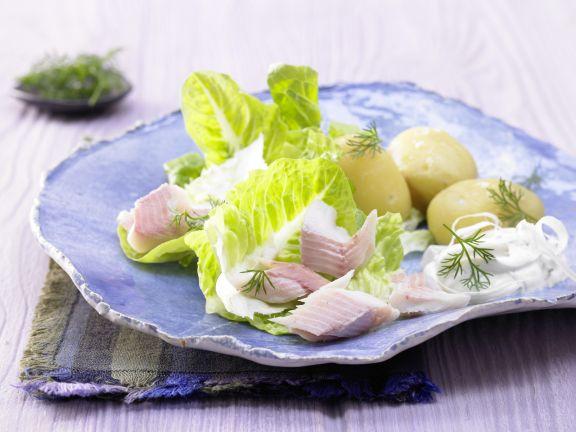 Forellenfilets auf Salat