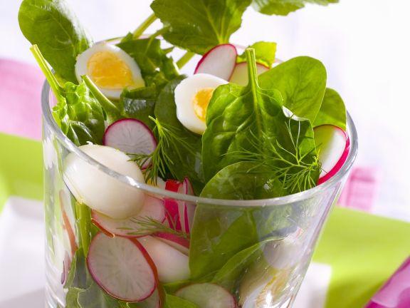 Frühlingshafter Salat mit Radieschen und Wachtelei