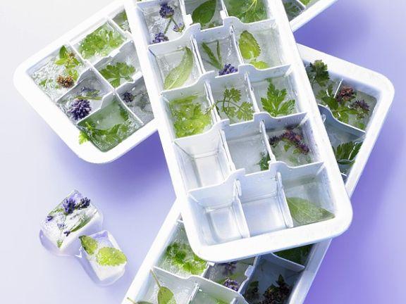Gefrorene Kräuter in Eiswürfelbehältern