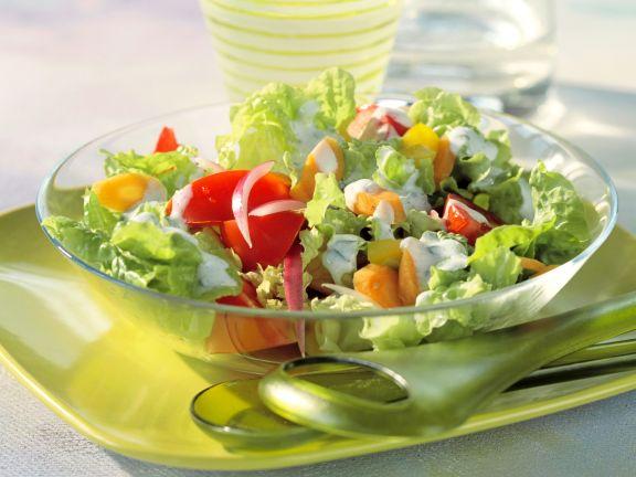Gemischter Salat mit Radieschen und Möhren