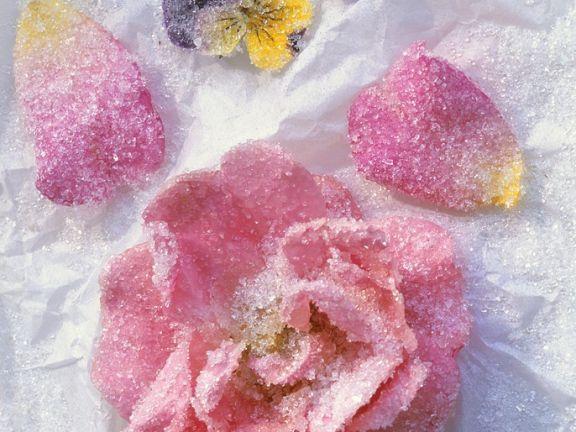 Gezuckerte Rosenblüte und gezuckerte Stiefmütterchen