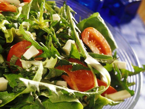 Grüner Salat mit Käse und Tomaten