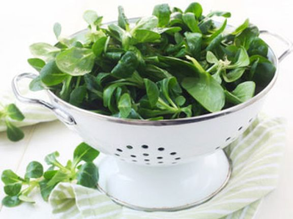 Feldsalat – gesund und lecker
