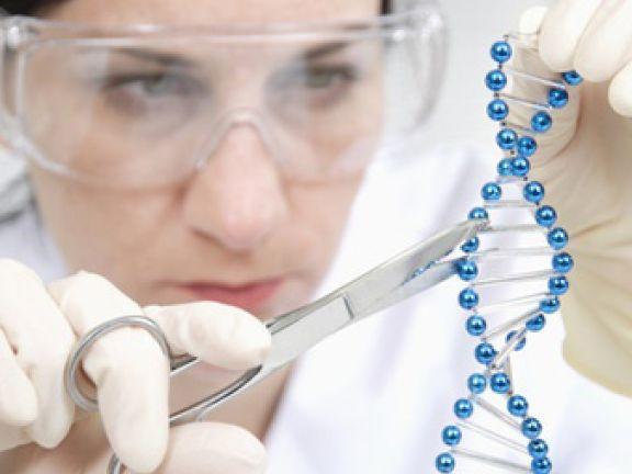 Gen-Food - zurecht kritisch beäugt?