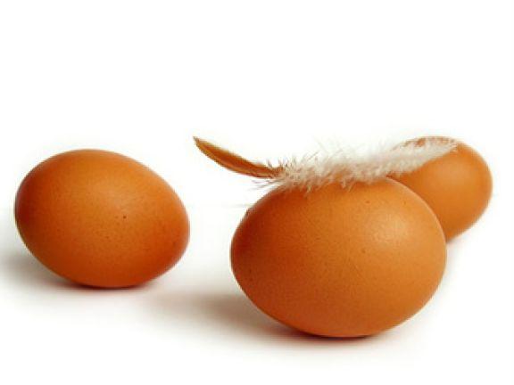 Streitthema Hühnerhaltung: Worauf Verbraucher achten können