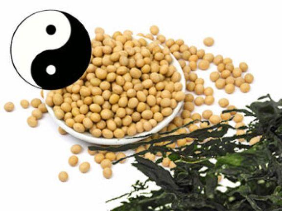 Was Sie über Makrobiotik nach Kushi wissen sollten