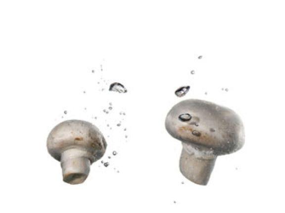 Darf man Pilze waschen?