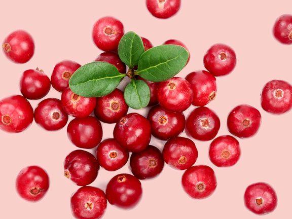 Cranberries - Beeren mit Gesundheitspower