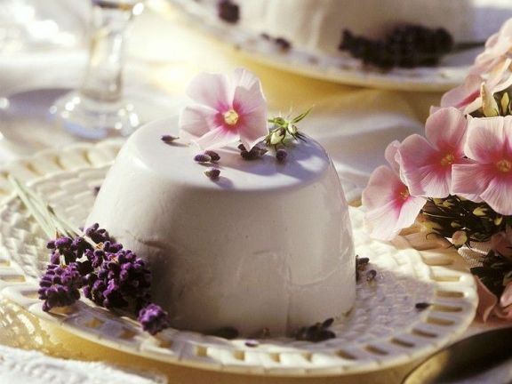 Joghurt Panna Cotta