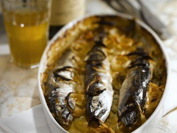 Kartoffelgratin mit Makrelen