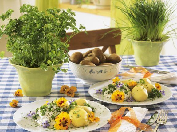 Kartoffeln mit Kräuterquark und essbaren Blüten