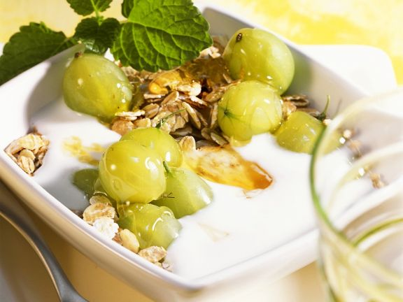 Kefir-Joghurt mit Stachelbeeren