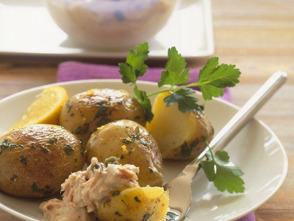 Kleine Kartoffeln und mit Thunfischsoße
