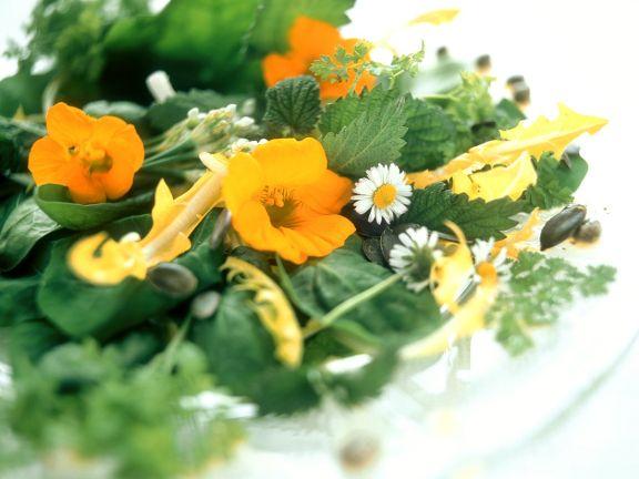 Kräuter-Blüten-Salat