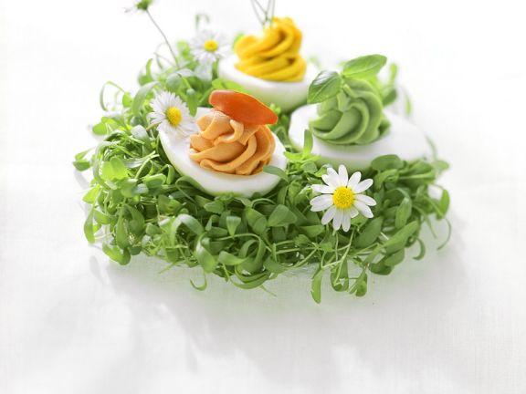 Kressenest mit pikanten Eiern