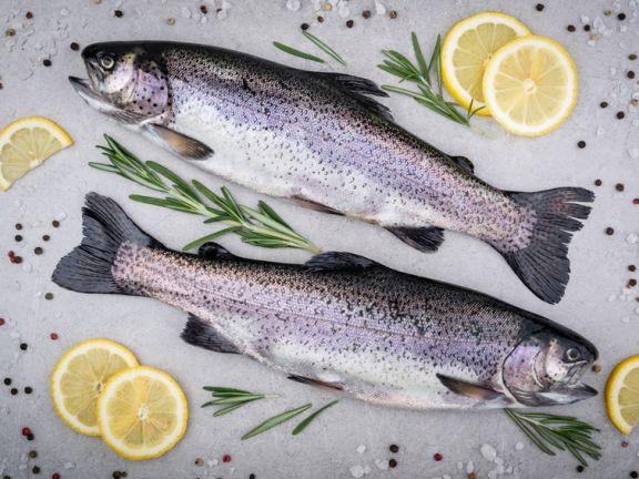 Lebensmittel bei Arthritis- Fetter Fisch