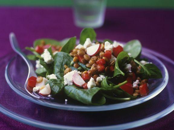 Linsensalat mit Spinat