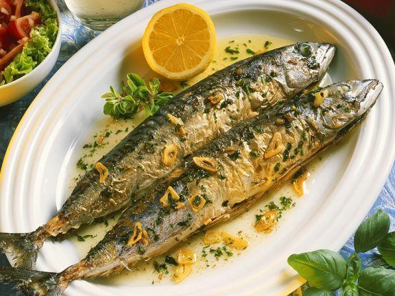 Makrele mit Knoblauch