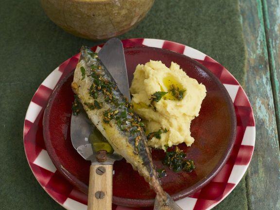 Makrele mit Püree aus Linsen und Petersilienwurzel