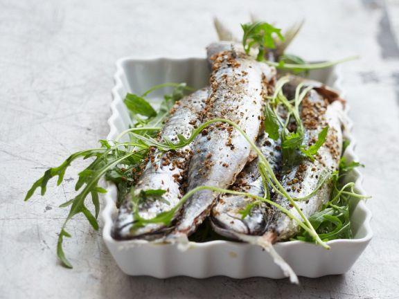 Makrelen aus dem Ofen
