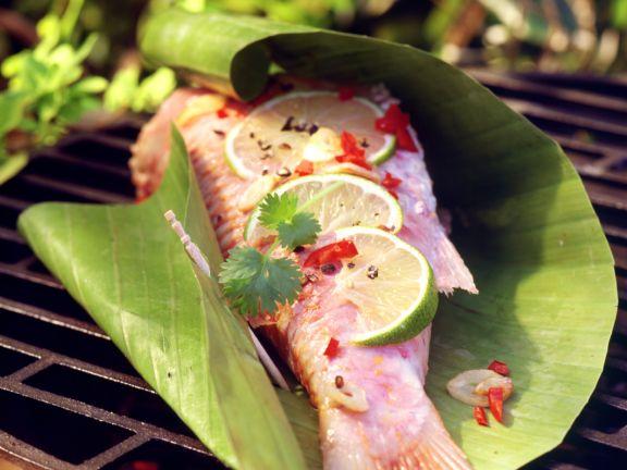 Marinierte Rotbarbe im Bananenblatt vom Grill