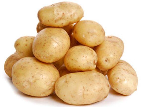 In diesen Zustand dürfen Kartoffeln ohne Bedenken gegessen werden