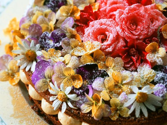 Orangen-Biskuittorte mit Blüten