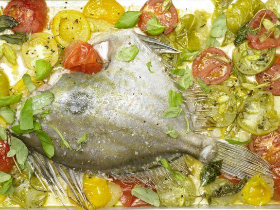 Petersfisch auf Tomatenbett