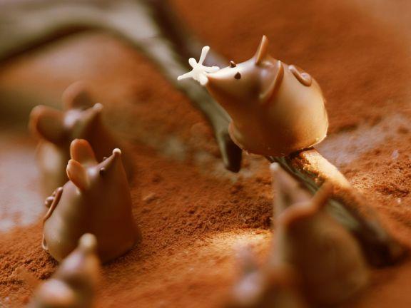 Pralinen in Mäuschenform