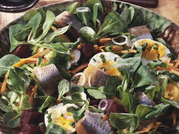 Rapunzelsalat mit Hering und Roter Bete