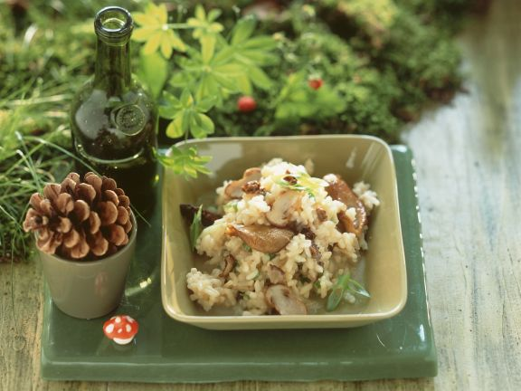 Risotto mit Austernpilzen