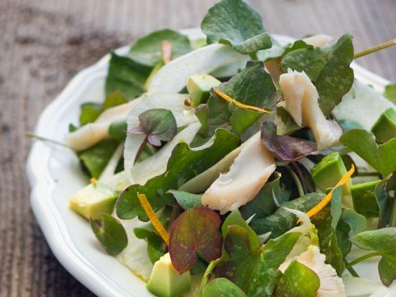 Salat mit Fenchel, Sauerampfer, Avocado und Forelle