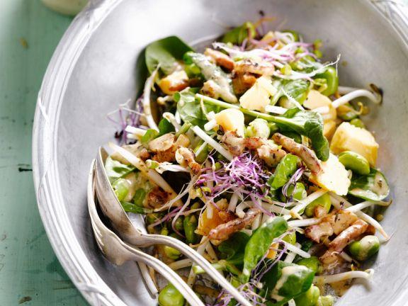 Salat mit Saubohnen, Sprossen und Hähnchen