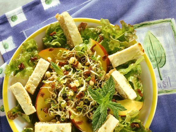 Salat mit Sprossen, Nektarinen und Croutons