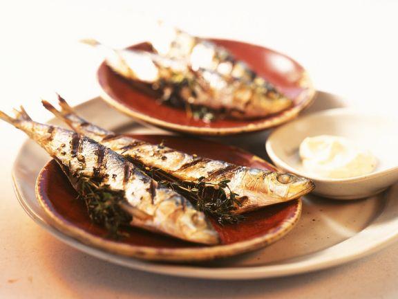 Sardinen vom Grill mit Aioli