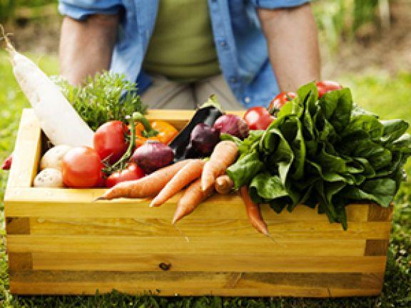 Eine ausgewogene Ernährung unterstützt die Gesundheit.