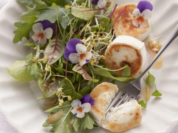 Sommerlicher Blattsalat mit Ziegenkäse und Himbeerdressing