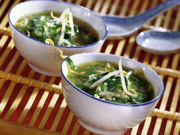 Spinat-Sprossen-Suppe
