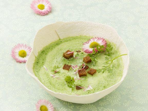 Suppe aus Frühlingskräutern