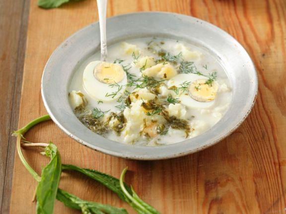 Suppe mit Sauerampfer, Kartoffel und Ei