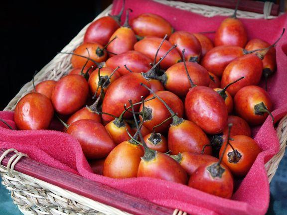 Die Tamarillo – ein Obst oder doch ein Gemüse? | Photo: @ Pixabay/cegoh