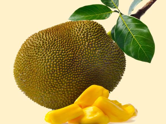 Jackfrucht: Geheimtipp für Veganer.