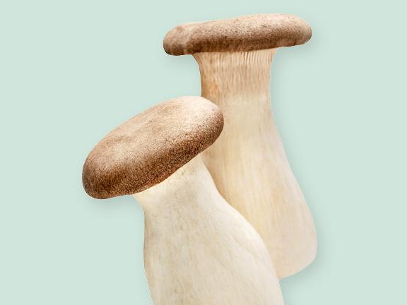 Pilze für Feinschmecker: Kräuterseitlinge