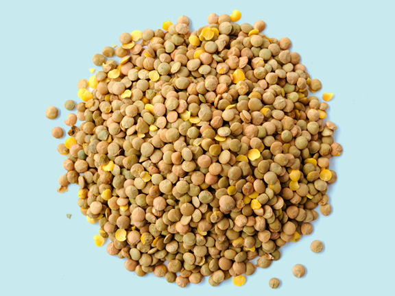 Linsen – ein kulinarischer Leckerbissen