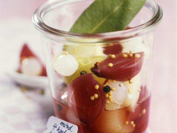 Verschiedene Zwiebeln in Rotwein mariniert