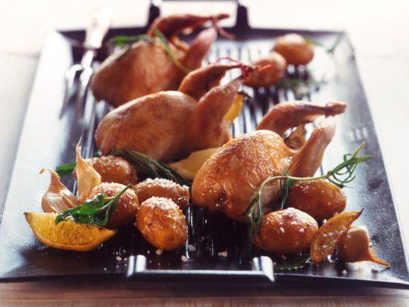 Wachteln mit Rosmarin und Kartoffeln aus dem Ofen