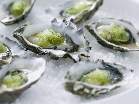 Wasabi-Austern