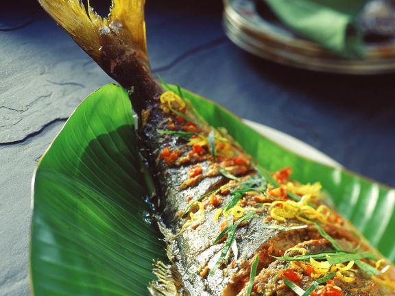 Würziger gegrillter Fisch