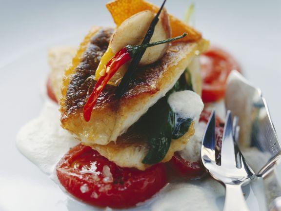 Zanderfilet auf marinierten Tomaten und schaumiger Buttermilchsoße